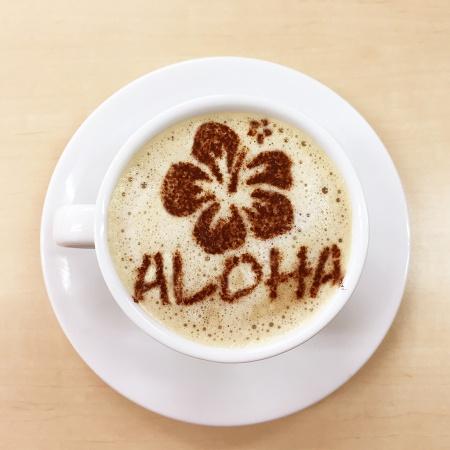 カフェアートステンシル Aloha LAS-0046 4573169220467